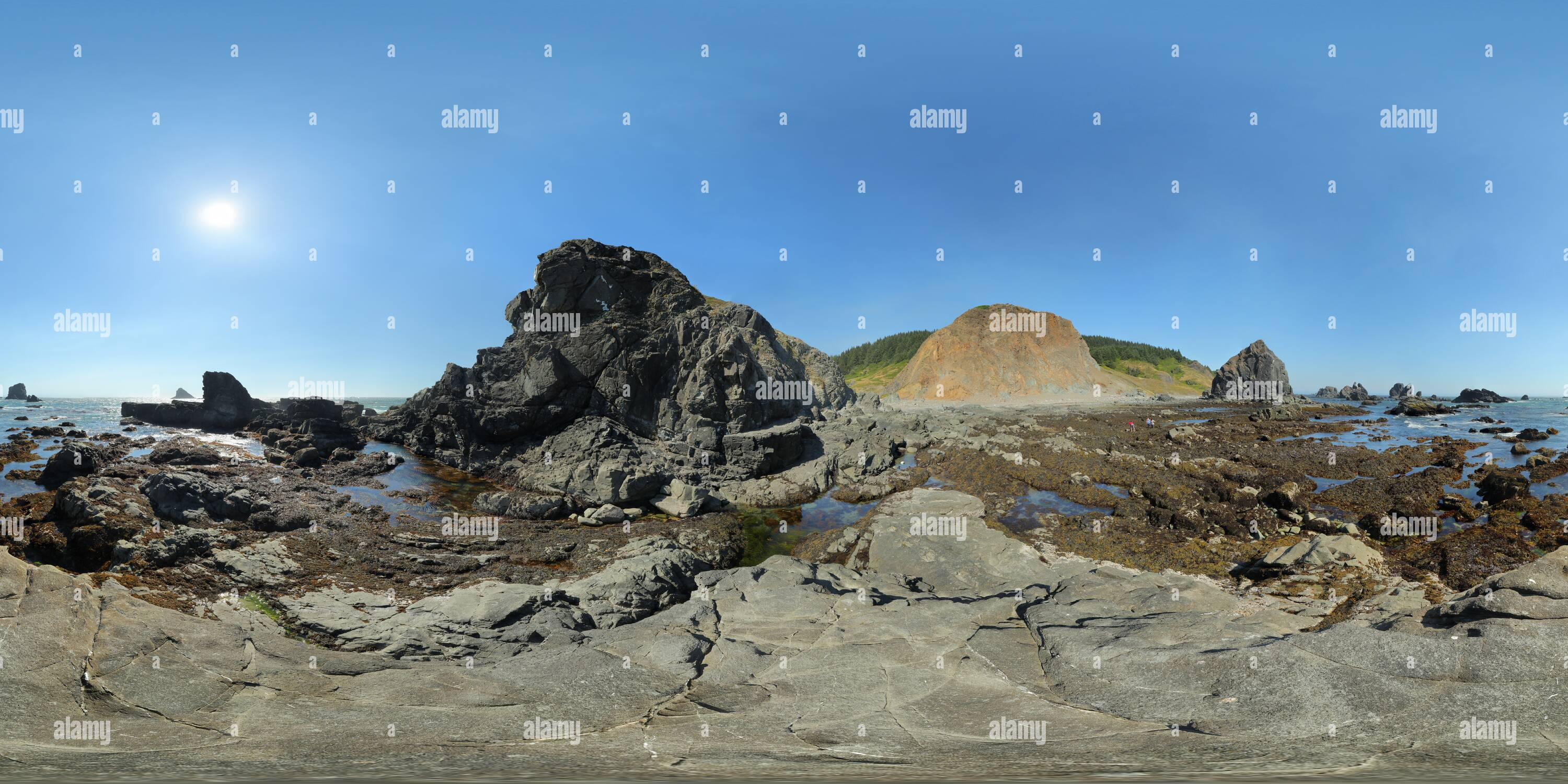 Lone Ranch Beach sea stacks - Stock Image