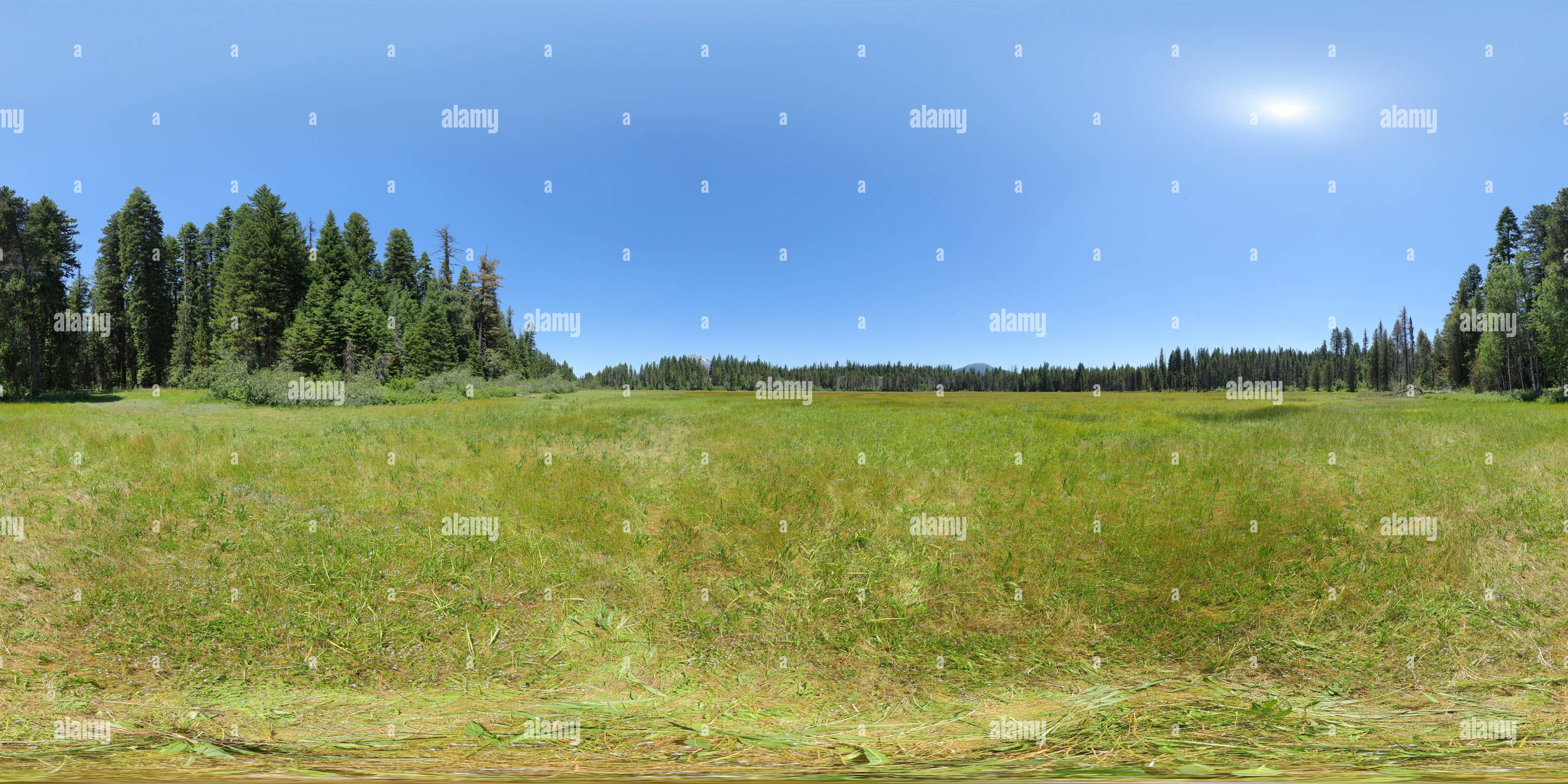 Big Elk Meadow - Stock Image