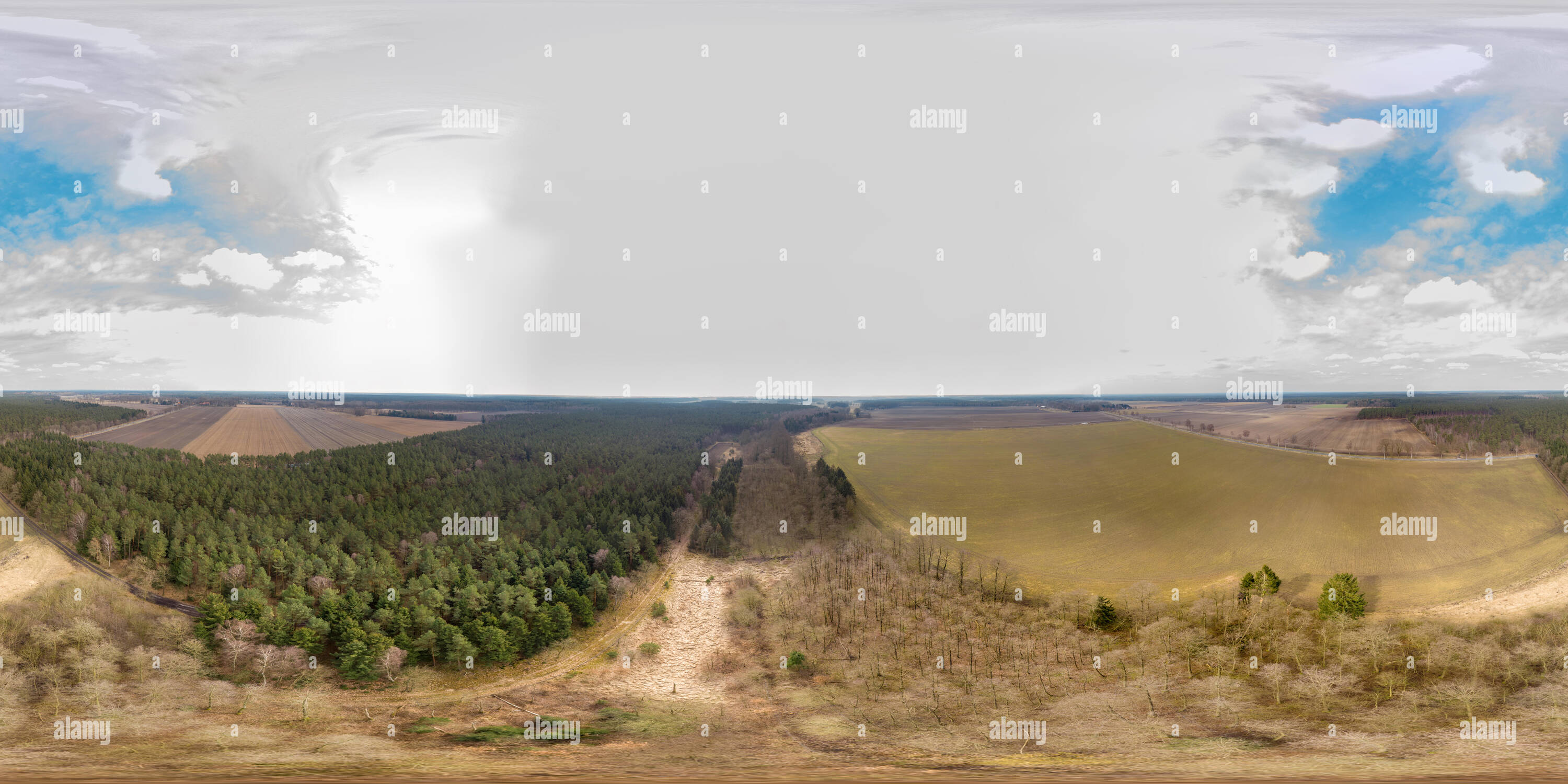 Spherical panorama from aerial photos of a forest area with dead trees between agricultural areas. - Stock Image