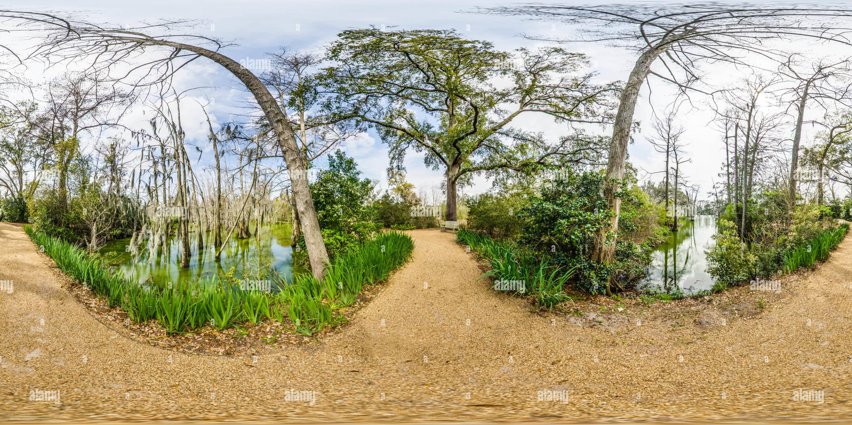 Shangri La Jardines Botánicos naranja 5 de Texas Imagen De Stock