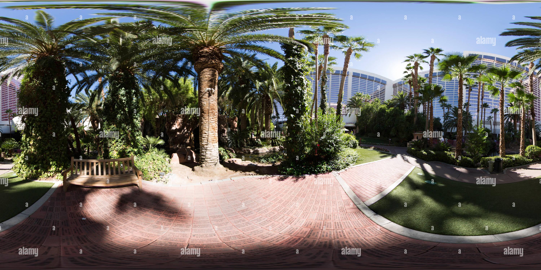 Las Vegas Flamingo Imagen De Stock