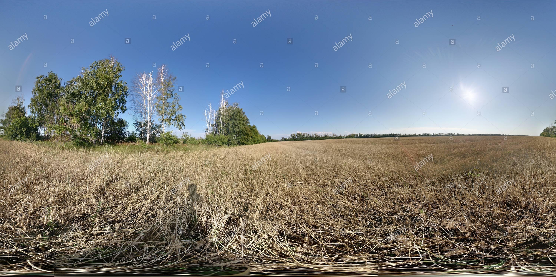 Federación de campo,русское поле Imagen De Stock