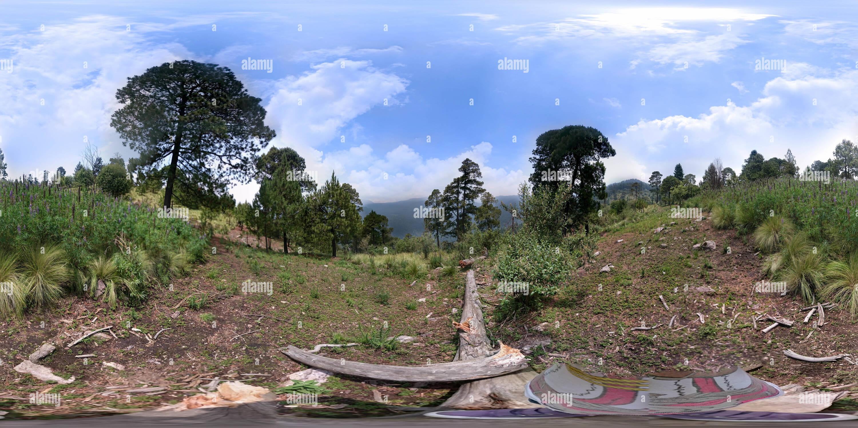 La montaña de San Bernabé, Magdalena Contreras, Mex Ciudad Imagen De Stock