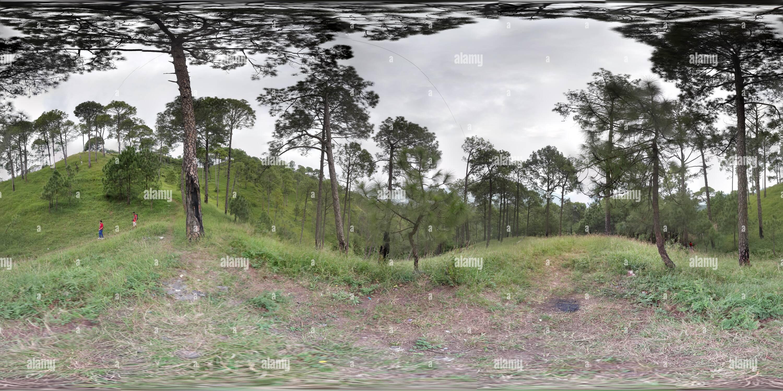 Naturaleza Sanvar camp 1 Imagen De Stock