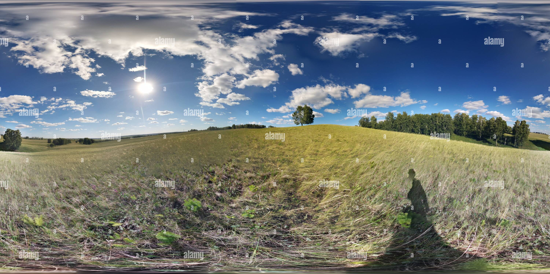 En la colina de árbol Imagen De Stock
