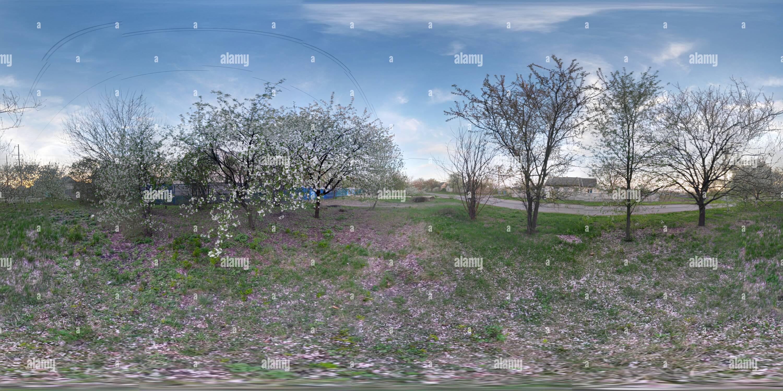 Cerca de primavera Imagen De Stock