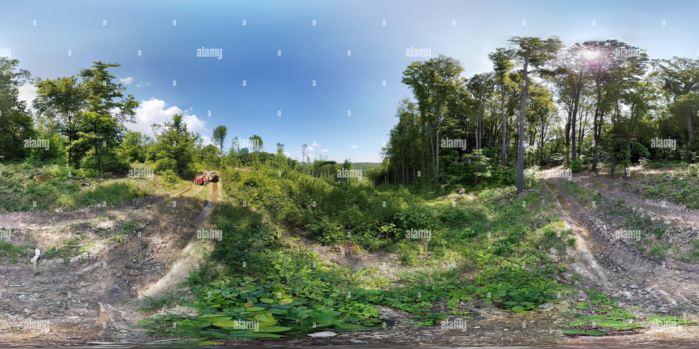 Bukovina Imagen De Stock
