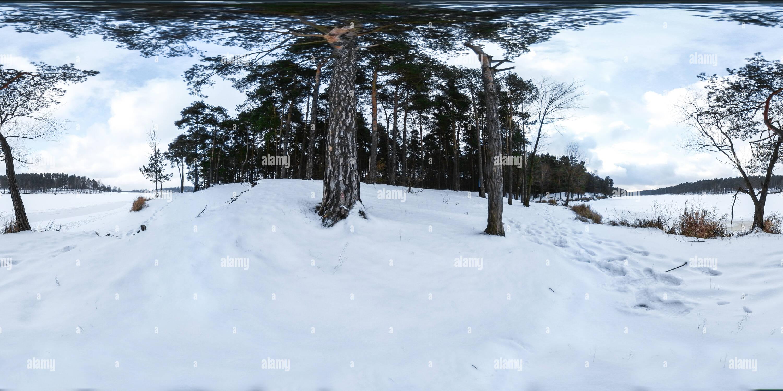 Lago congelado y bosque - invierno en Polonia Imagen De Stock