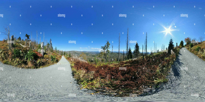 - Zum Lusen Lusen Winterweg Gipfel Imagen De Stock