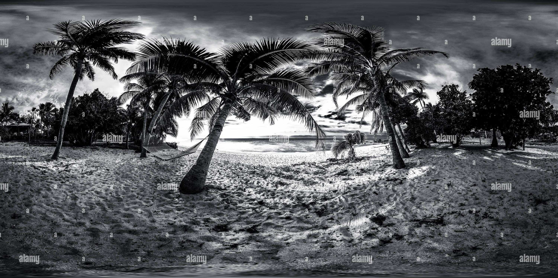 Hammok y palmeras - Archipiélago de Mamanuca, Islas Fiji - Oceanía Imagen De Stock