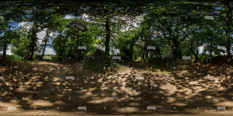 Encrucijada de caminos rurales en la sombra de los árboles Imagen De Stock