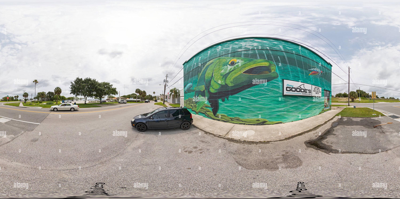 Snook Mural por Mike McClusky Imagen De Stock