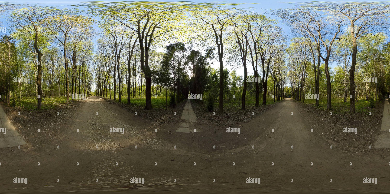 Vue panoramique à 360° de Biruliovsky-arboretum