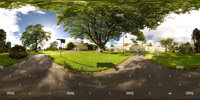 Palm House et Plage curviligne Photo Stock