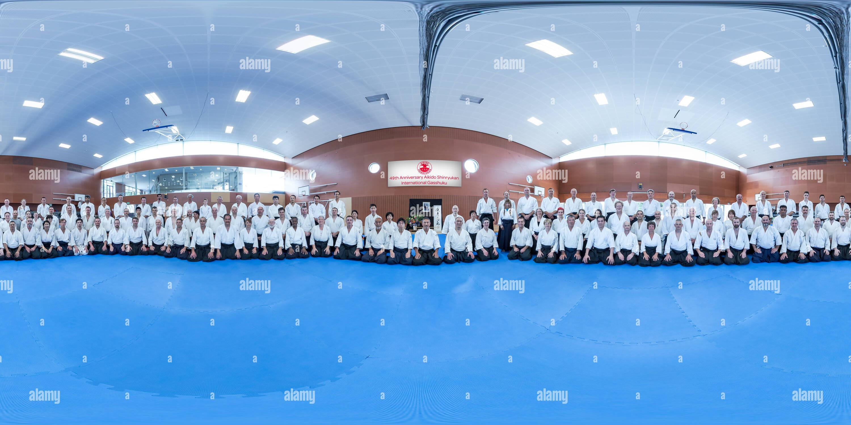 49e stage international d'Aikido - Auckland - Nouvelle-Zélande Photo Stock
