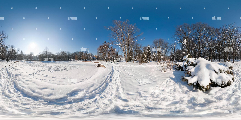 Lac gelé dans le parc Photo Stock