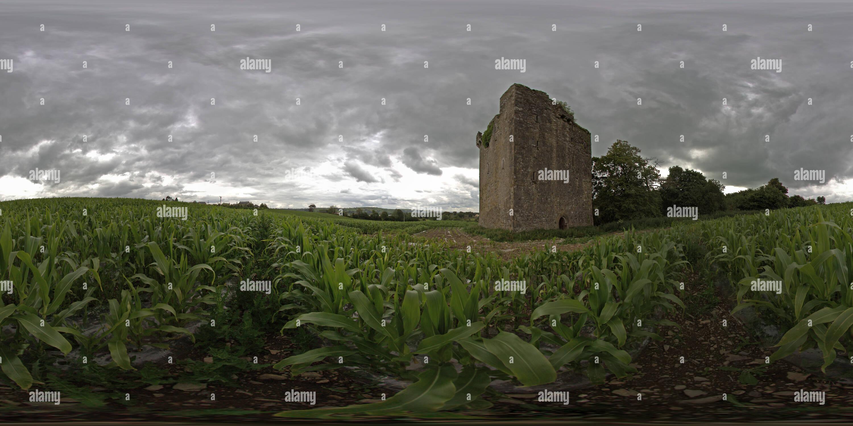 Château d'crockstown Photo Stock