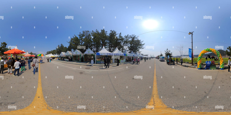 삼척유채꽃축제 Photo Stock