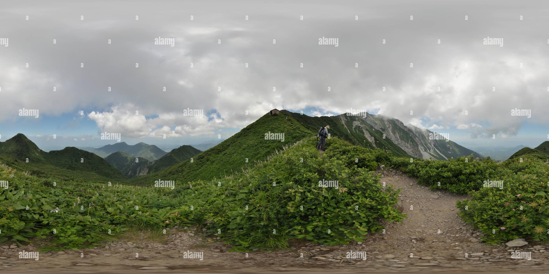Champ de fleurs sur Mt Daisen Tottori,.au Japon Photo Stock
