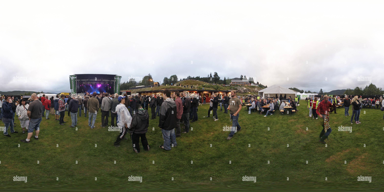 Festival Roots 2011 Eikerapen Photo Stock