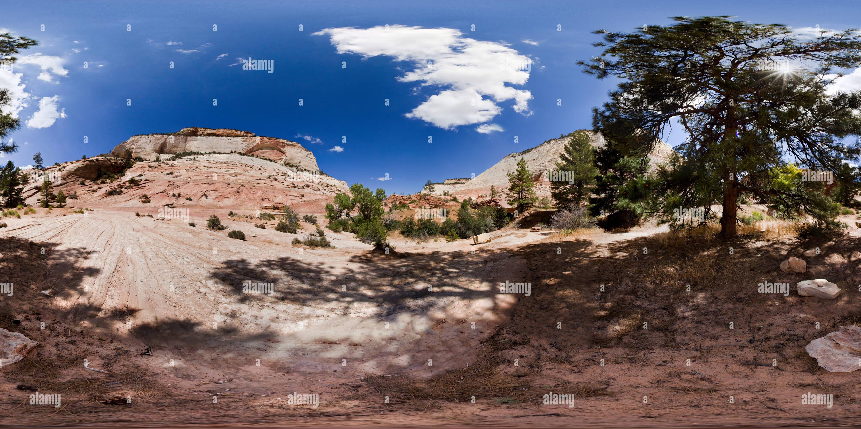 Côté Est du Parc National Zion, près de l'entrée, Utah, USA Photo Stock