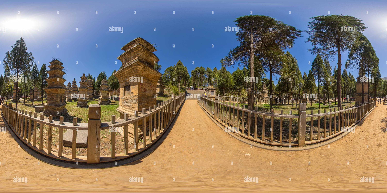 La pagode du temple de Shaolin DE LA FORÊT Photo Stock