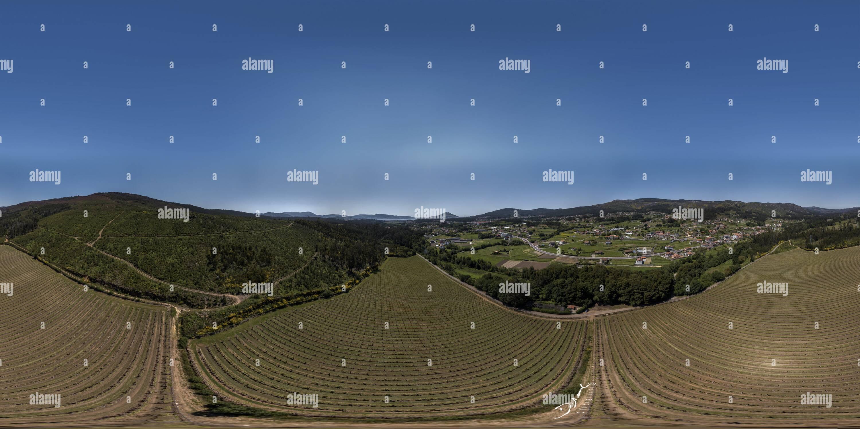 Ponteareas, O Rosal vignes des vignobles Lagar de Cervera Photo Stock