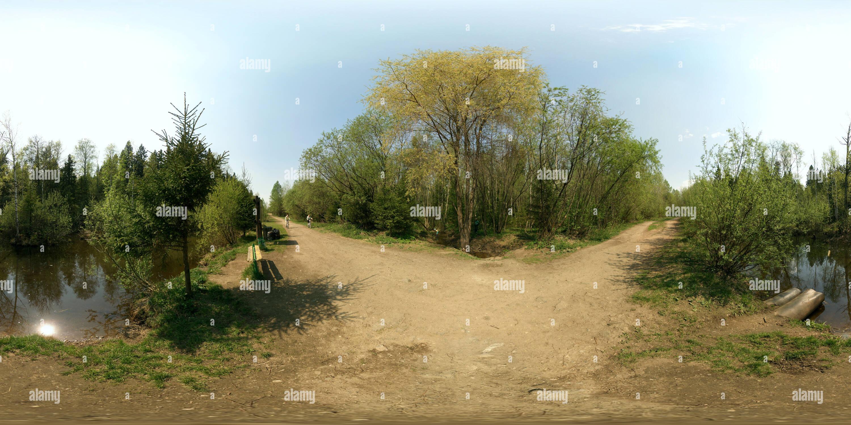 В лесу Пруд Черняевском Photo Stock