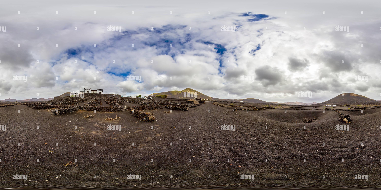 Vigneti di origine vulcanica di Lanzarote Immagini Stock